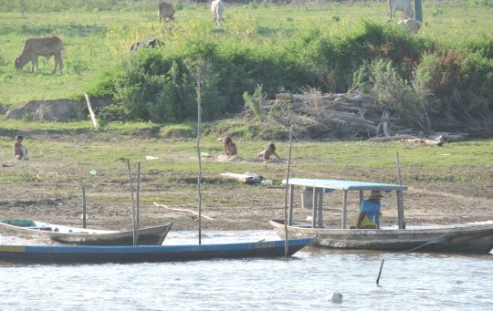 orillas rio amazonas