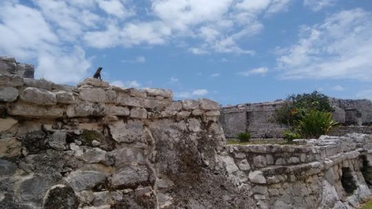 ruinas akumal